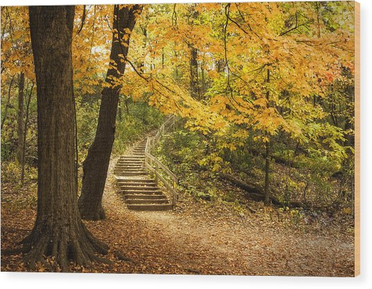 Autumn Stairs Wood Print