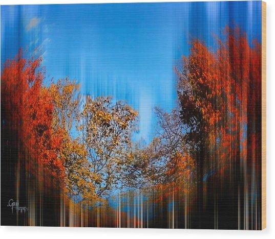 Autumn Streak Wood Print