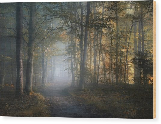 Autumn Symphony Wood Print
