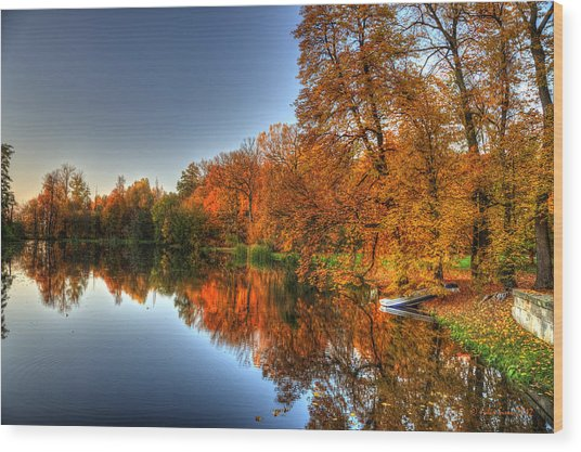 Autumn Trees Over A Pond In Arkadia Park In Poland Wood Print