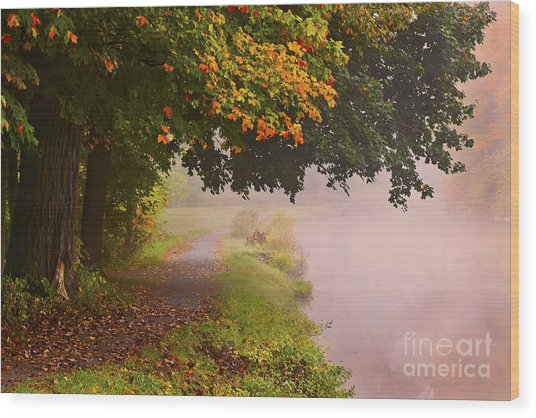 Autumn Walk Wood Print by Julie Palyswiat
