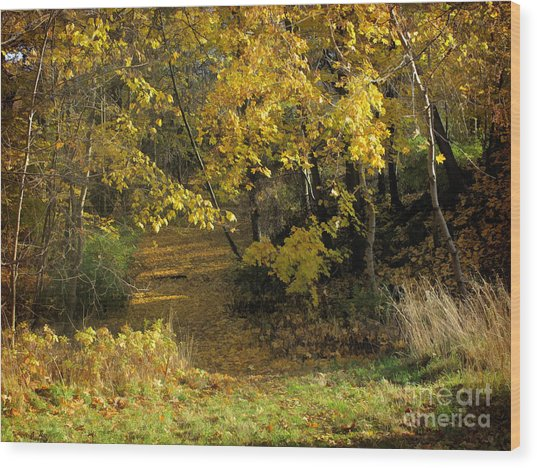 Autumn Walk Wood Print by Lutz Baar