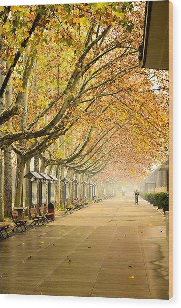 Autumn Walk Xian China Wood Print