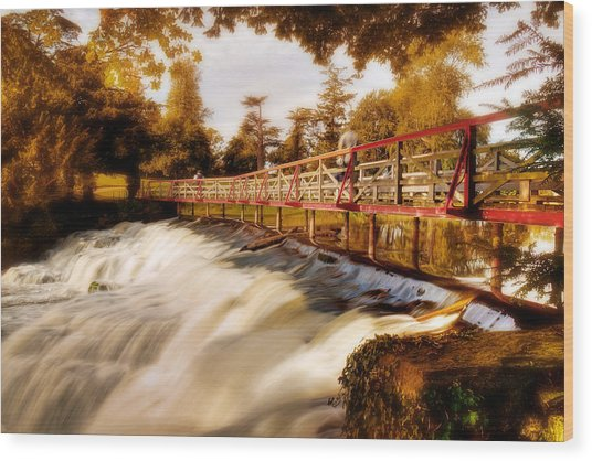 Wood Print featuring the photograph Autumn Waterfall / Maynooth by Barry O Carroll