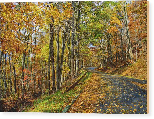 Autumn Winding Road Wood Print