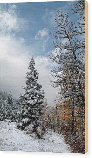 Autumn Winter Colors 2 Wood Print
