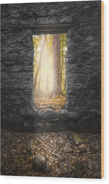 Autumn Within Long Pond Ironworks - Historical Ruins Wood Print