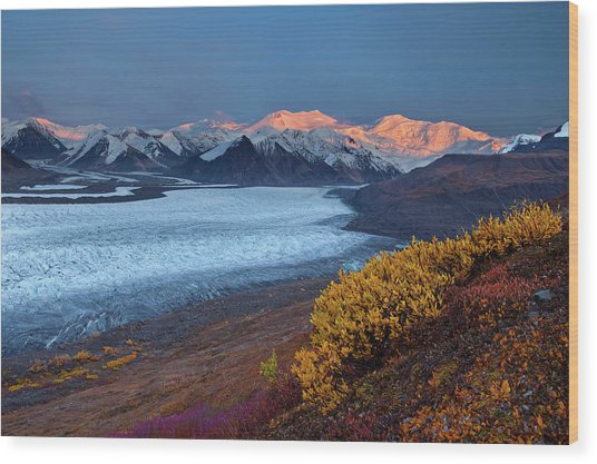Autumn's Last Light Wood Print