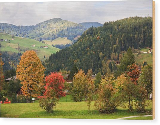 Autumnal Colours In Austria Wood Print