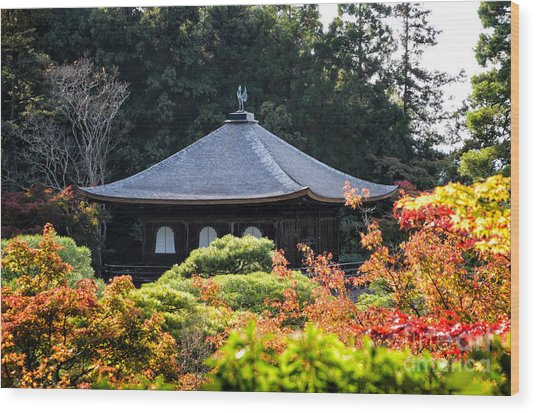 Autumnal Temple - Ginkaku-ji - Temple Of The Silver Pavilion In Kyoto Japan Wood Print