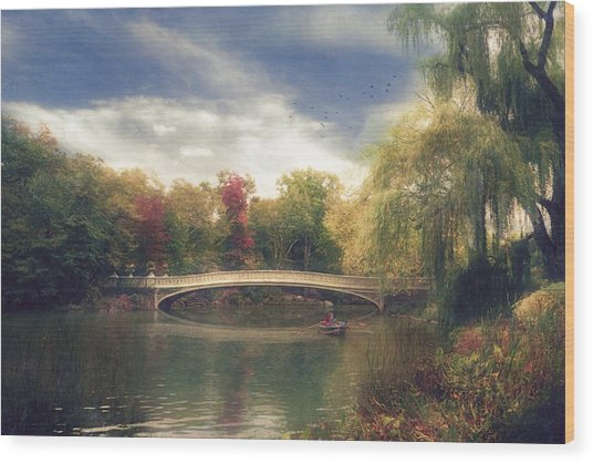 Autumn's Afternoon In Central Park Wood Print by John Rivera