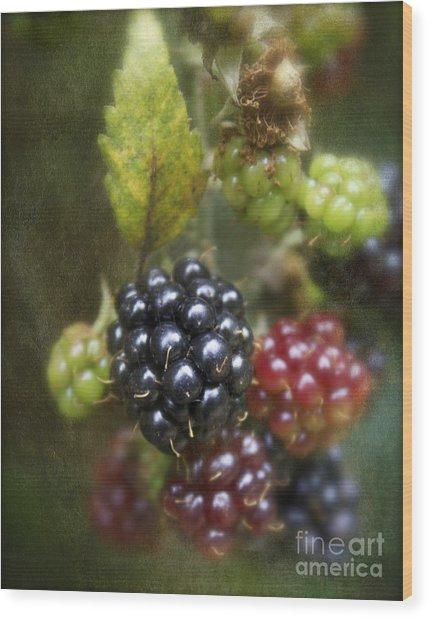 Autumn's Fruit Wood Print by Michelle Orai