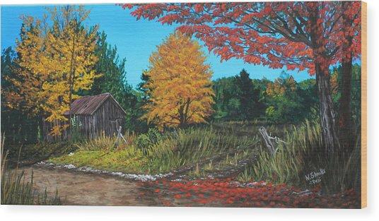 Autumns Rustic Path Wood Print