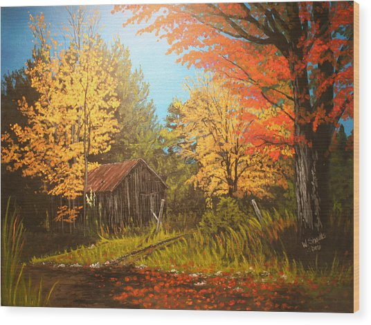 Autumns Rustic Road Wood Print