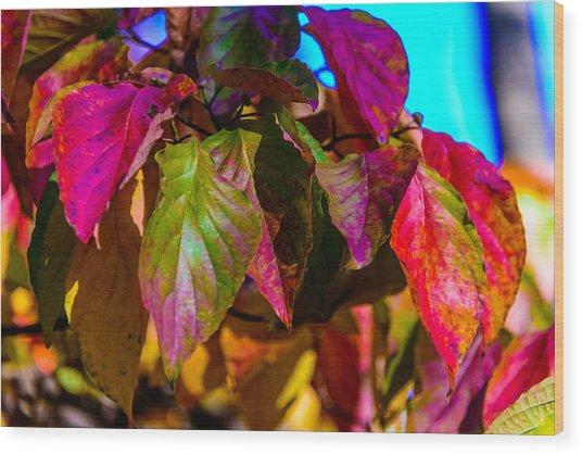 Autumns Wake Up Call Wood Print