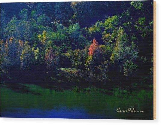 Wood Print featuring the photograph Autunno Alba Sul Lago - Autumn Lake Dawn 9749 by Enrico Pelos