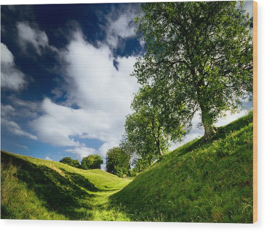 Avebury Hillside Wood Print