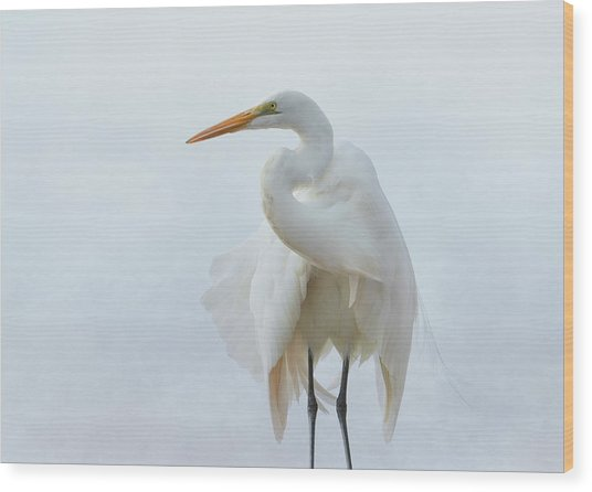 Avian Angel Wood Print