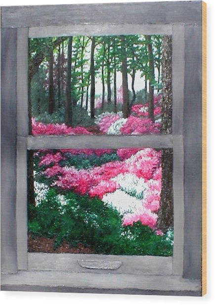 Azalea Bowl Overlook Gardens Wood Print by Beth Parrish