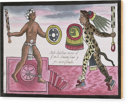 Aztec Sacrificial Fight Wood Print by Library Of Congress