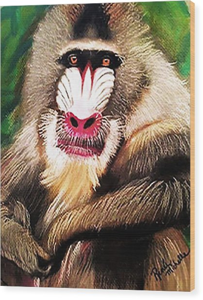 Baboon Stare Wood Print
