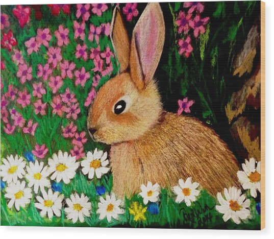 Baby Bunny In The Garden At Night Wood Print