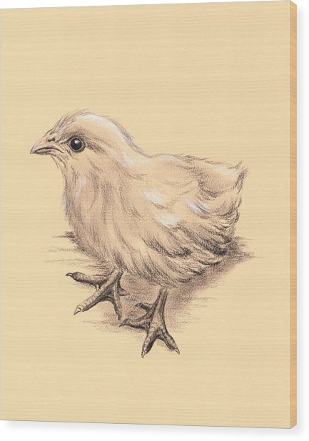 Baby Chicken Wood Print