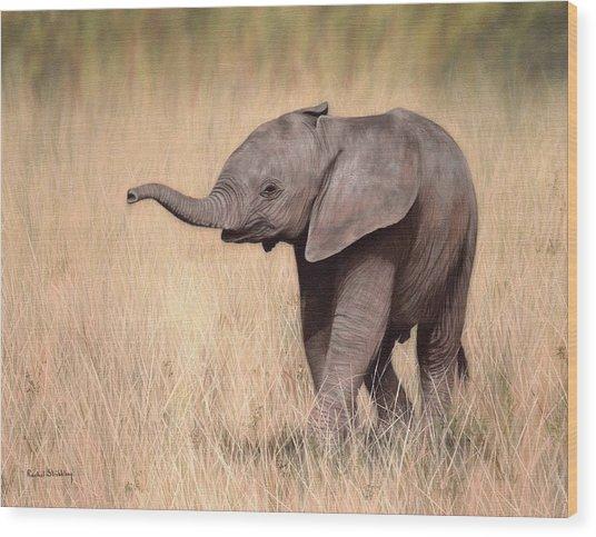 Elephant Calf Painting Wood Print