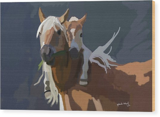 Baby Horse Wood Print by Nydia Williams