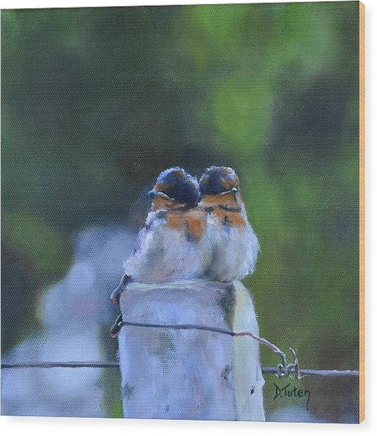 Baby Swallows On Post Wood Print