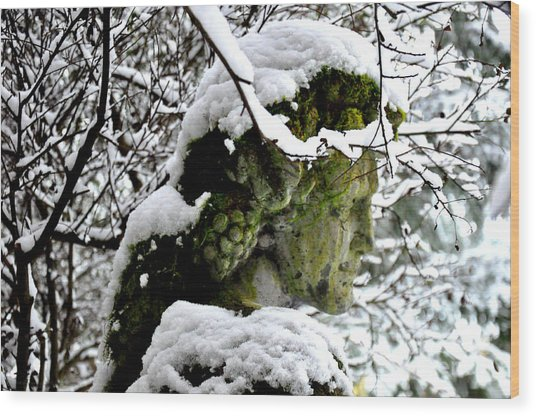 Bacchus Statue Under Snow Wood Print