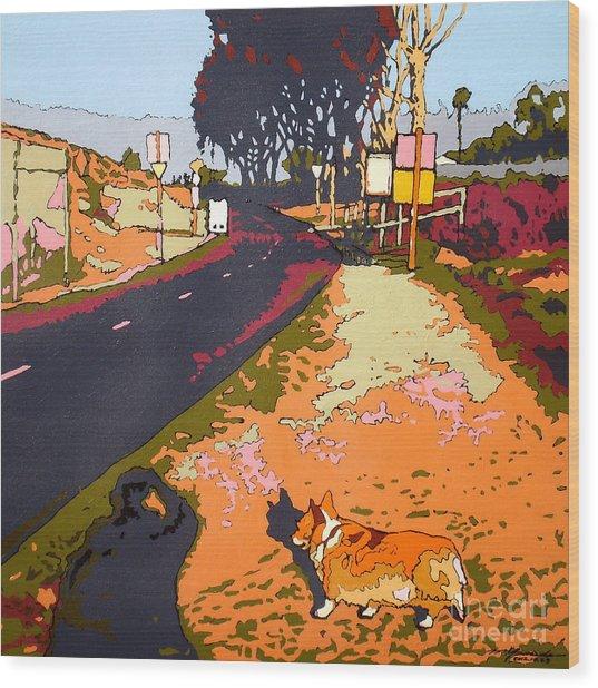 Back Bay Trail #567 Wood Print by Max Yamada