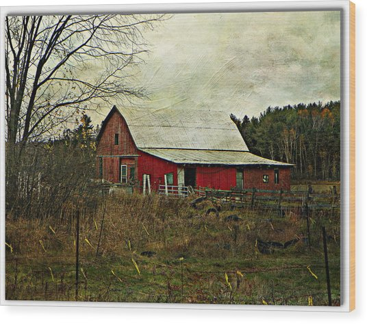 Back Road Barns  Wood Print by Dianne  Lacourciere