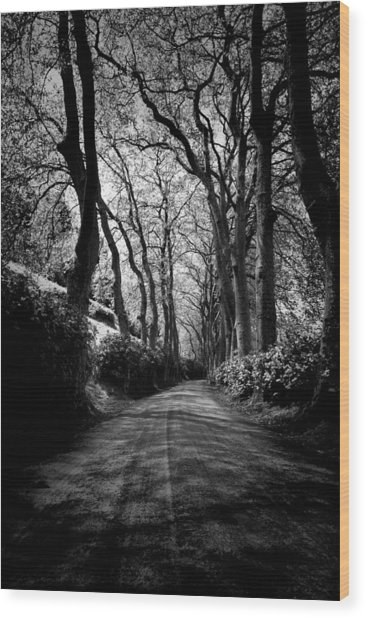 Back Road East 2 Wood Print
