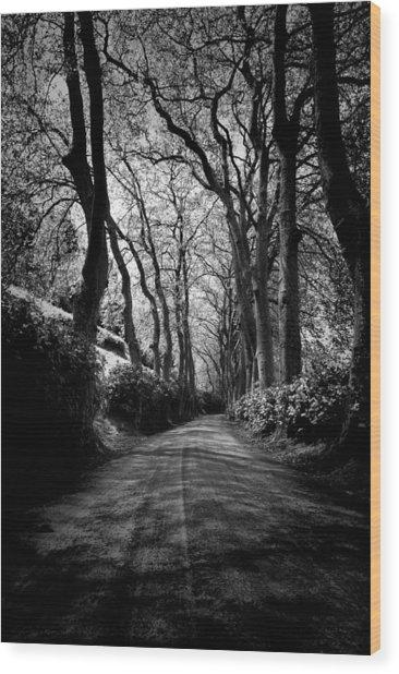 Back Road East 2 Wood Print