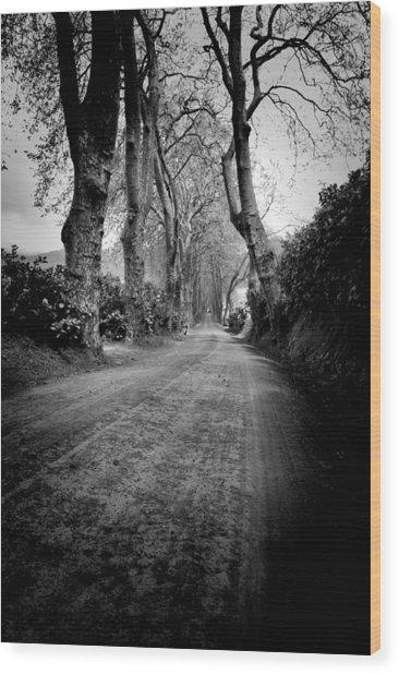 Back Road East Wood Print