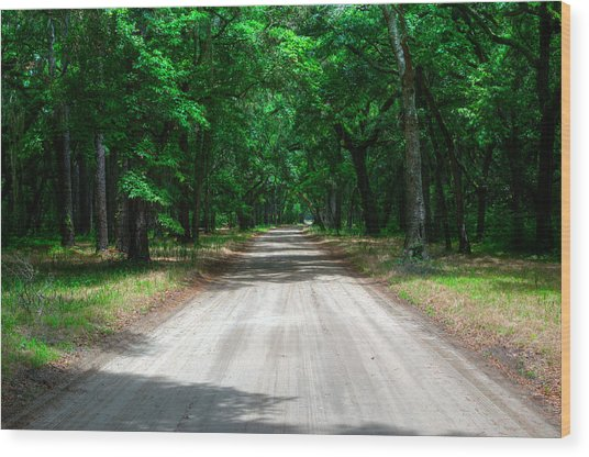 Back Roads Of South Carolina Wood Print