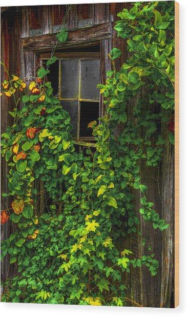 Back Window Wood Print by Russ Burch