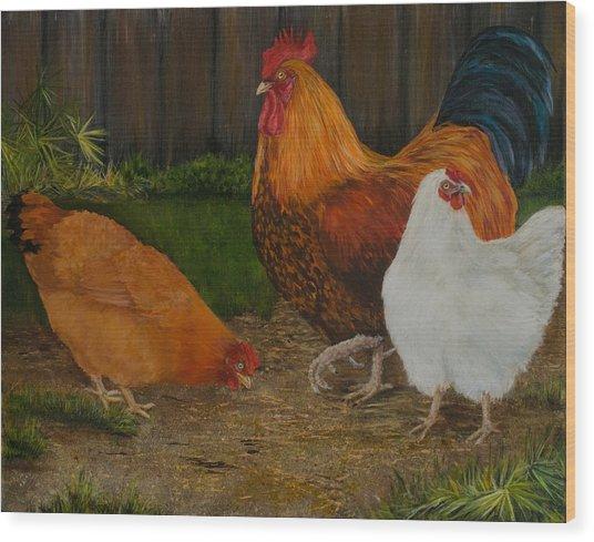 Back Yard Flock Wood Print