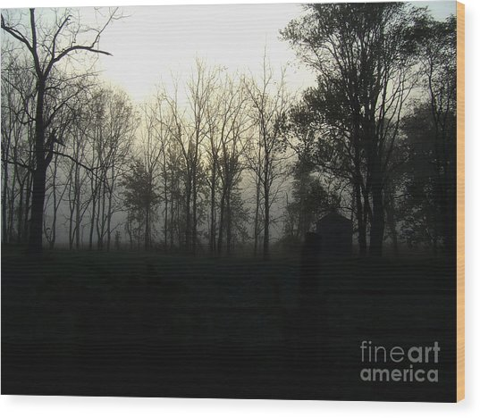 Background Muse Wood Print