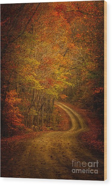 Backroad Color Wood Print