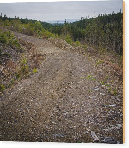 4x4 Logging Road To Adventure Wood Print