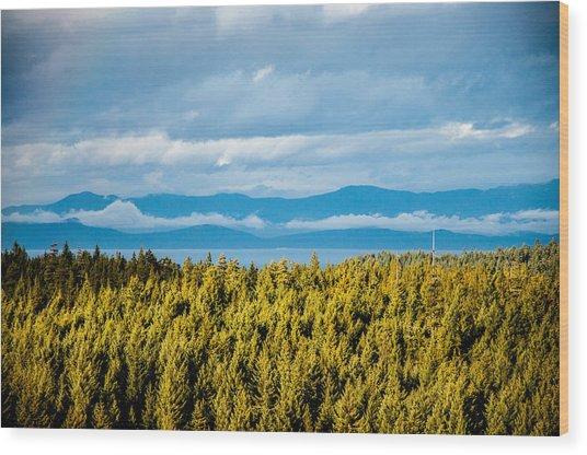 Backroad Ocean View Wood Print