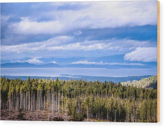 Johnstone Strait High Elevation View Wood Print