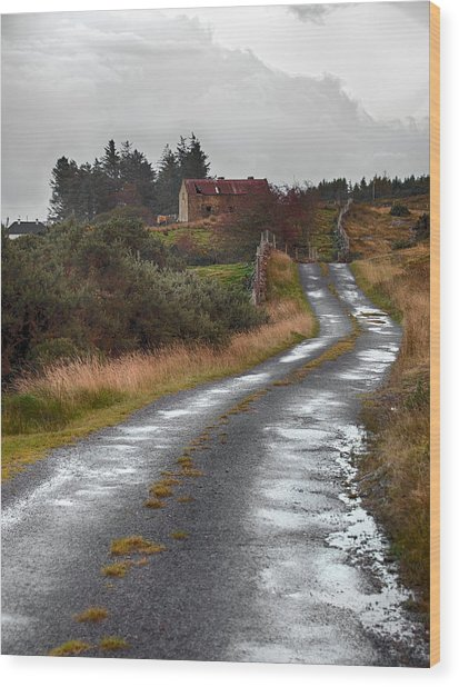 Wood Print featuring the photograph Backroads Of Ireland by Trever Miller