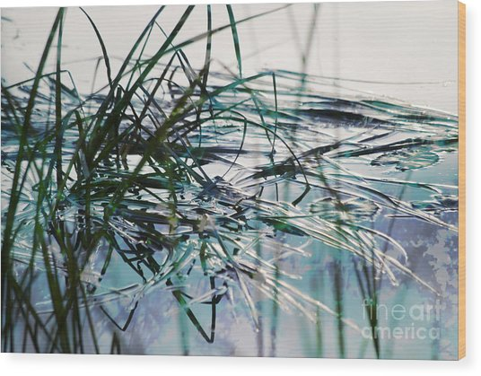 Backwater In Blues Wood Print