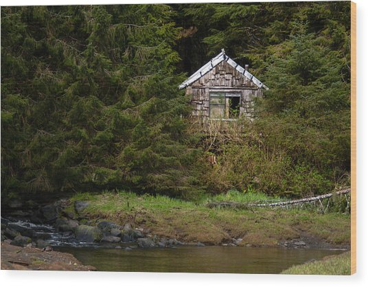 Backwoods Shack Wood Print