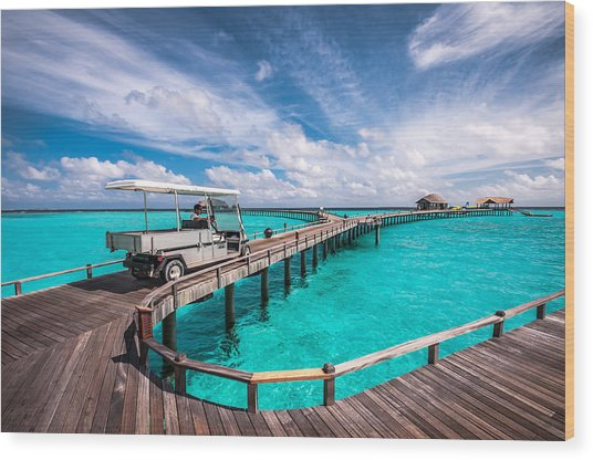 Baggy On The Jetty Over The Blue Lagoon Wood Print