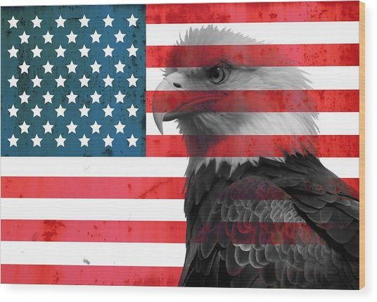 Bald Eagle American Flag Wood Print