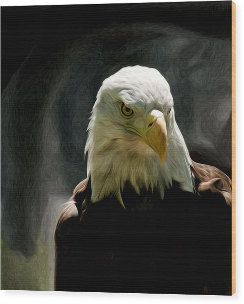 Bald Eagle Giving You That Eye Wood Print